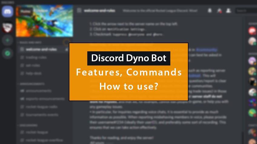 discord dyno bot